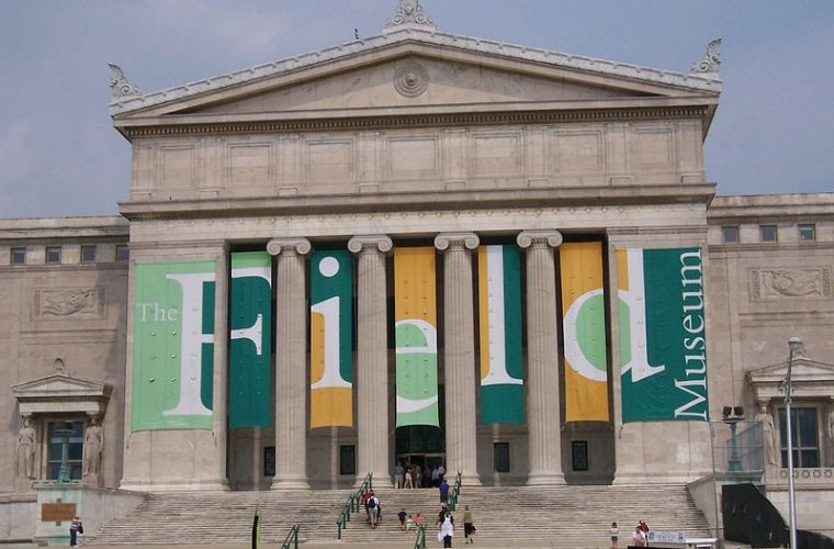Museo Field - Chicago