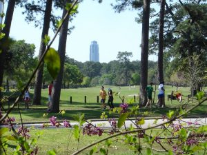 Clima soleado de Houston.