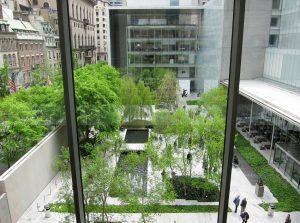 Museo de arte moderno de nueva york visita virtual